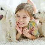 Amor incondicional…pelos animais!