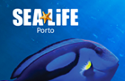 Programa Educativo SEA LIFE Porto