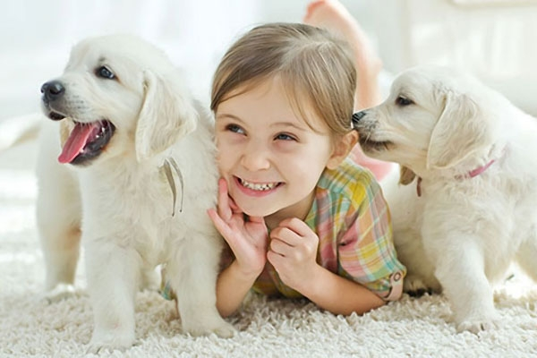 Amor incondicional...pelos animais!