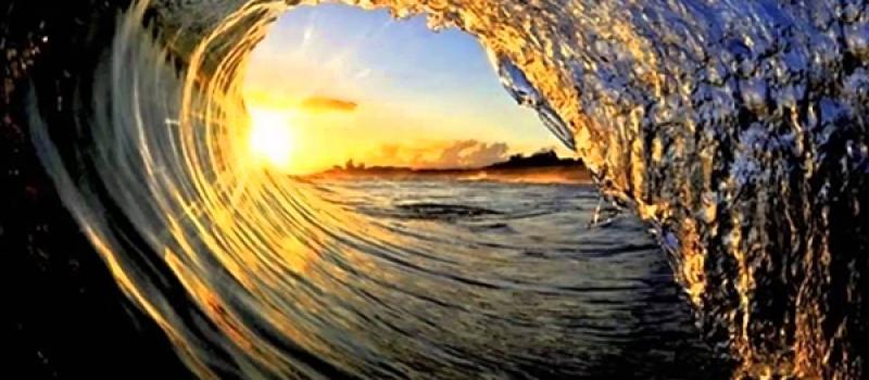 surfnonatal